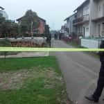 U Gradišci ubijen poznati kriminalac! (FOTO)