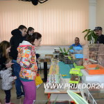 Otvorena međugradska izložba sitnih životinja (VIDEO)