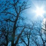 Danas sunčano i toplije
