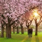 Proljeće je savršeno doba da započnete novu ljubavnu vezu