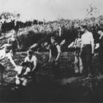 Stradanje Srba iz Grubišinog Polja