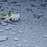 U četvrtak slaba kiša