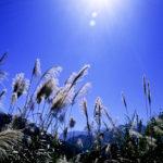 U srijedu sunčano i veoma toplo, temperatura do 30 stepeni