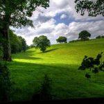 U petak promjenljivo oblačno sa dužim sunčanim intervalima (VIDEO)