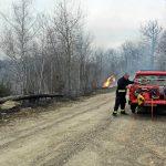 Proljećno palenje korova uzrok velikog broja požara (VIDEO)