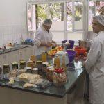 Prijedorski učenici pripremaju zimnicu (VIDEO)
