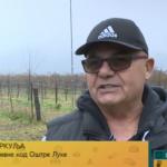 Patent Pere Trkulje iz Koprivne za zaštitu voća od mraza (VIDEO)