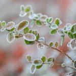 Hladno, mjestimično snijeg