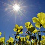 U subotu pretežno sunčano i toplo
