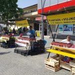 Dani jagode u Prijedoru (VIDEO)