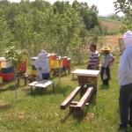 """""""Mala škola pčelarstva"""" u organizaciji prijedorskog Udruženje pčelara """"Prva pčela"""" (FOTO i VIDEO)"""