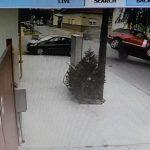Jeziv snimak udesa u Novom Sadu: Automobil prevrnuo džip Range Rover i bacio ga na druga vozila (VIDEO)