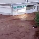 KATAKLIZMIČNI PRIZORI IZ GRČKE Bujica reke nosi SVE PRED SOBOM, turisti gledaju u neverici! (VIDEO)
