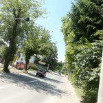 """""""OSTALA JE NEPOMIČNO DA LEŽI, OBLIVENA KRVLJU"""" Policajac automobilom udario ženu i pobjegao"""