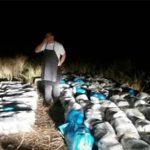 U Neumu zaplijenjena CISTERNA SKANKA, droga namijenjena zapadnom tržištu