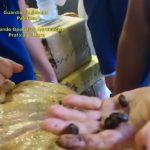 Pogledajte hapšenje Crnogoraca sa drogom vrijednom 200 miliona evra (VIDEO)