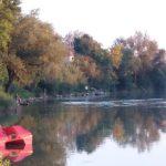 IAKO JE SEPTEMBAR NE ŽELE DA IZAĐU IZ VODE Zaljubljenici u Sanu koriste svaku priliku da se osvježe i opuste u ovoj rijeci