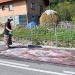 Kamiondžija u BiH ostao u šoku kada je vidio gdje je žena iznijela tepih na pranje (FOTO)