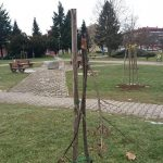 Sadnice drveća u Prijedoru na meti vandala: Komunalci ogradili nove drvorede