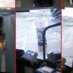Pobesneli Hrvat demolirao gradski autobus: Staklo je letelo na sve strane, dok su putnici bili zaključani unutra (VIDEO)