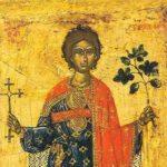 Danas Sveti Trifun