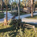 Trebinje- Olujni vjetar nanio ogromnu štetu gradu (VIDEO/FOTO)