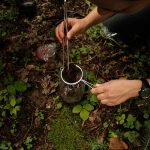 BOGATO NALAZIŠTE U Nacionalnom parku Kozara otkrivene čak 44 NOVE VRSTE TVRDOKRILACA