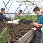 Učenici prijedorske Poljoprivredno-prehrambene  škole u dva plastenika  proizvode rasad ranog povrća (VIDEO)