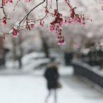 Snijeg u Sloveniji i Hrvatskoj VIDEO