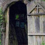 BAJKOVIT PRIZOR IZ SRBIJE Crkvica smještena u unutrašnjost hrasta (FOTO)