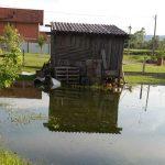 STRAHUJU OD ZARAZE Ekološki problemi u Baltinim barama kod Prijedora