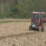 Prijedor: Sjetva kukuruza završena na 90 odsto planiranih površina