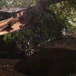 HAOS NA ULICAMA Ostavio je vozilo na parkingu, ono što je zatekao ZAPREPASTILO JE SVE (FOTO)