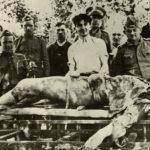 UPOZORENjE HRVATIMA: Lažete o Jasenovcu
