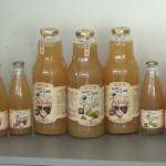 """Voćari """"Kooperative"""": Bilo bi lakše s vlastitom linijom za proizvodnju sokova (VIDEO)"""