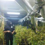 Banjaluka: Otkrivena velika laboratorija za proizvodnju skanka (FOTO i VIDEO)