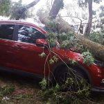 Preko 50 automobila uništeno za 15 minuta olujnog nevremena (FOTO)