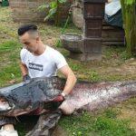 Ribolovac ulovio gigantskog soma od 103 kilograma (FOTO)