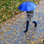 STIGLA PRAVA JESEN Danas oblačno sa slabom kišom, temperatura do 13 stepeni