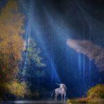 Dnevni horoskop za 6. novembar