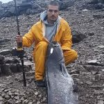 POBIJEDIO GRDOSIJU Poslije velike borbe ribolovac na Bilećkom jezeru upecao soma OD DVA METRA