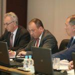 Zašto srpski ministri nisu glasali protiv ANP