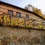 Ovdje spava nobelovac - Kosmet čeka Handkea (FOTO/VIDEO)