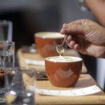 BAHATOST BEZ KRAJA Odbornicima za kafu 50.000 KM, a OVAKO ih je častio mladi aktivista (VIDEO)