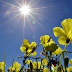 PROGNOZA OBEĆAVA I KIŠU POSLIJE PODNE Prvi dan vikenda biće sunčan, ali i oblačan
