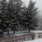 Snijeg zabijelio Kozaru