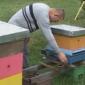 Brojni problemi prijedorskih pčelara u vrijeme pandemije virusa korona (VIDEO)