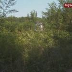 SRAMOTA GRADSKE UPRAVE Spomenik NOR-a u Gornjim Orlovcima zarastao u KOROV (VIDEO)