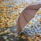 NIGDJE BEZ KIŠOBRANA Sutra oblačno sa slabom kišom, uz sunčane periode