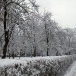 Narednih dana oblačno i hladno